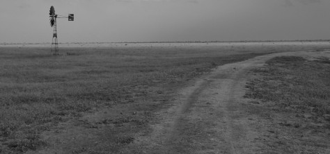 Dirt_road_towards_the_east_by_the_windmill_of_the_Ndara_Borehole_in_the_Tsavo_East_National_Park,_Kenya